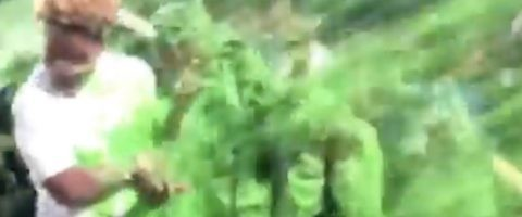 Watch: Janelle Monae Gets That Nickelodeon Slime Drip